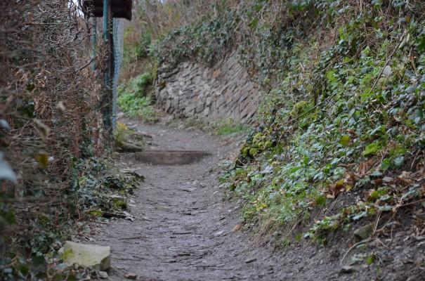 Nur nicht einschüchtern lassen - der Aufstieg zu Burg Are © entdecker-greise.de