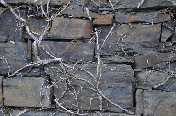 Impressionen auf Stein © entdecker-greise.de