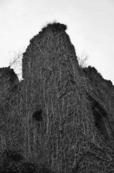 """""""Naturgeschichte"""" © entdecker-greise.de"""