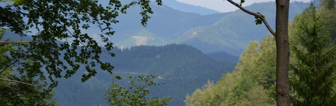 Herrliche Aussichten auf dem Via Sacra ©entdecker-greise.de