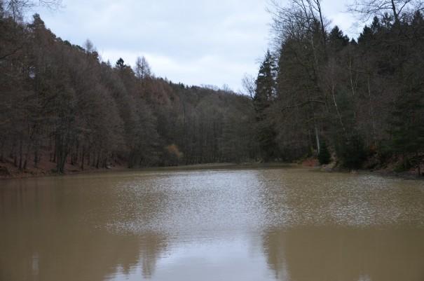 Der Kadettenweiher in der Nähe von Schloss Bensberg ©entdecker-greise.de