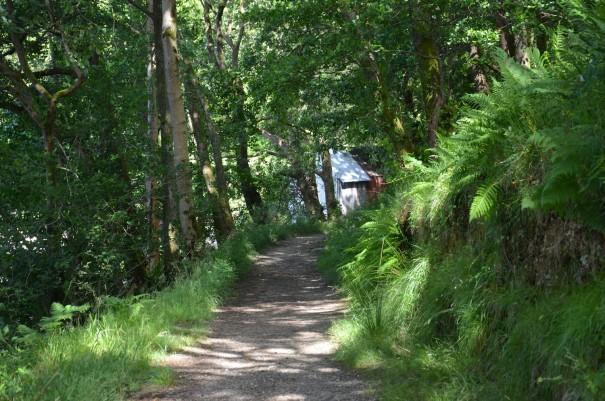 Der West Highland Way - ein Paradies für Backpacker ©entdecker-greise.de
