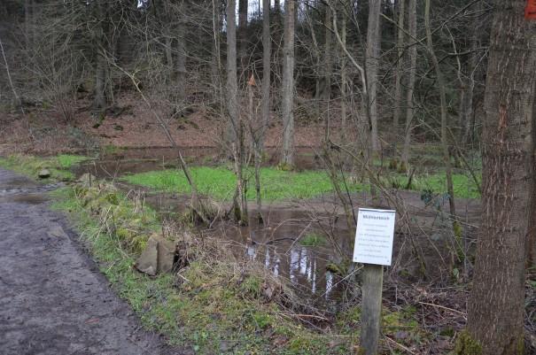 Die Niederschläge der letzten Wochen war wohl auch für den alten Mühlteich zuviel ;-) ©entdecker-greise.de