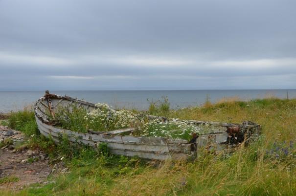 Einfach mal die Seele baumeln lassen - Schottlands Küste bietet viel Raum dafür. ©entdecker-greise.de
