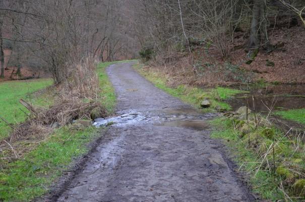 Mein Weg ist überflutet ;-) ©entdecker-greise.de