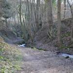 Abwechslungsreiche Streckenführung auf dem Ahrsteig ©entdecker-greise.de