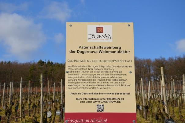 Der Patenschaftsweinberg ©entdecker-greise.de