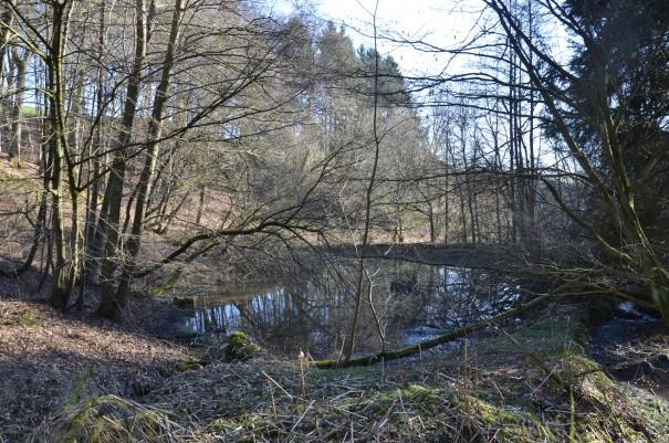 Erste Eindrücke im Naafbachtal ©entdecker-greise.de