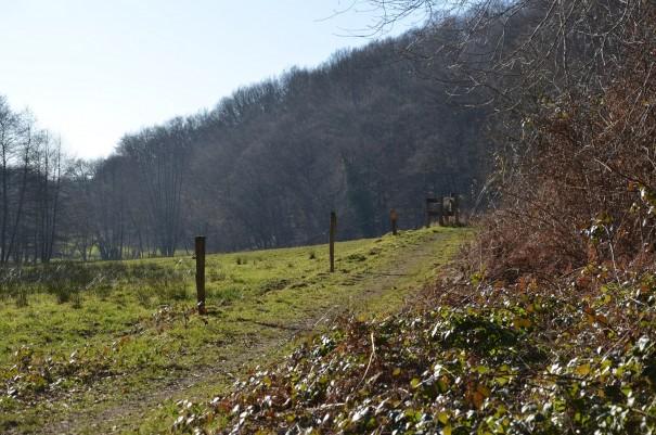Kleine Rast im Naafbachtal ©entdecker-greise.de