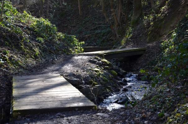 Wegführung des Ahrsteigs über Holzstege ©entdecker-greise.de