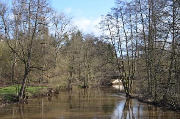 Die Glan bei Meisenheim ©entdecker-greise.de