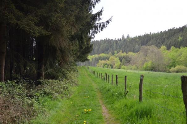 Genussvolle Momente beim #TTwandern auf dem Westerwald Steig ©entdecker-greise.de