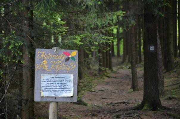 Unvorstellbar, das dies hier ein alter Kohletransportweg war. #TTwandern auf dem Westerwald Steig ©entdecker-greise.de