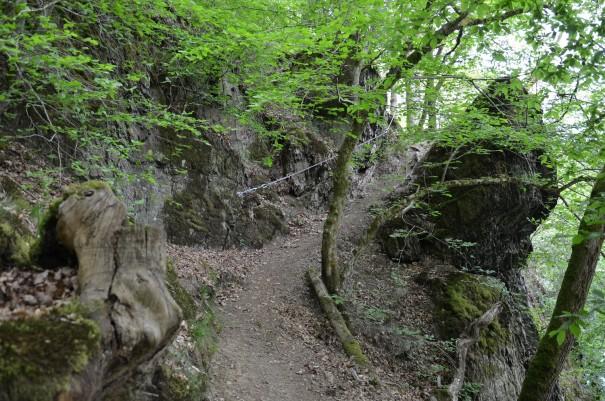Dank der Drahtseilführung ist der Anstieg hier auf dem Westerwald Steig kein Problem #TTwandern ©entdecker-greise.de