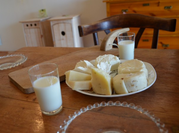 Frische Ziegenmilch und eine köstliche Auswahl feinster Käsespezialitäten vom Rechhof ... ©entdecker-greise.de