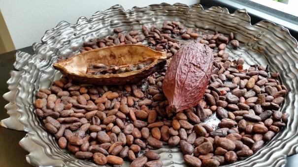 Edelste Kakaobohnen fair gehandelt, für die Tiroler Edle ©entdecker-greise.de