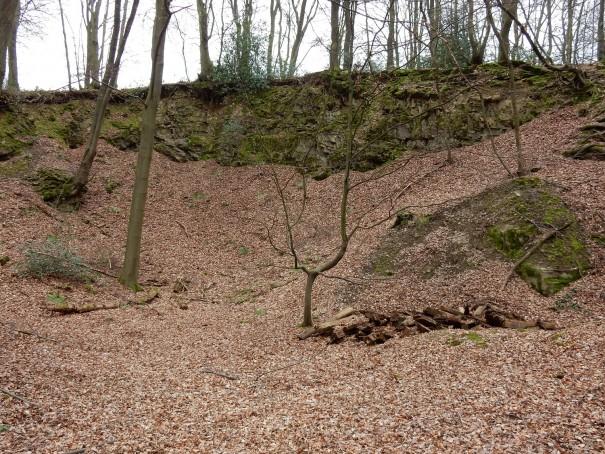 Bei jedem Wetter wunderschön - die Wanderung auf dem Bergbauweg. ©entdecker-greise.de