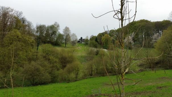Idyllisch ist es im Bergischen Land, wie hier auf dem Klangpfad. ©entdecker-greise.de