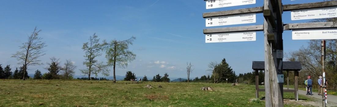 Das Schmallenberger Sauerland verfügt über ein reichhaltiges Wander-Wegenetz. ©www.entdecker-greise.de
