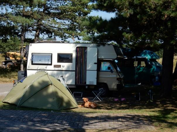 Ein Platz an der Sonne auf Texelcamping Loodmansduin. ©www.entdecker-greise.de