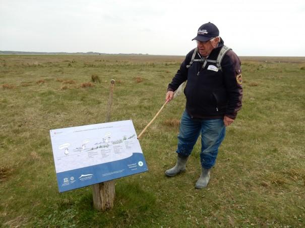 Anhand von Schautafeln erklärt Ossi uns die einzelnen Tierarten, die hier im Weltnaturerbe des Niedersächsischen Nationalpark Wattenmehr heimisch sind ©www.entdecker-greise.de