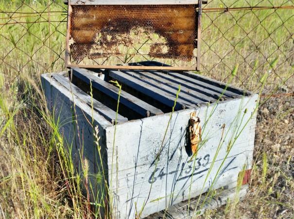 Hin und wieder entdeckt man bei der Wanderung zum Petros Felsen ausrangierte Bienenkästen, wie diesen hier. ©www.entdecker-greise.de #corfelios