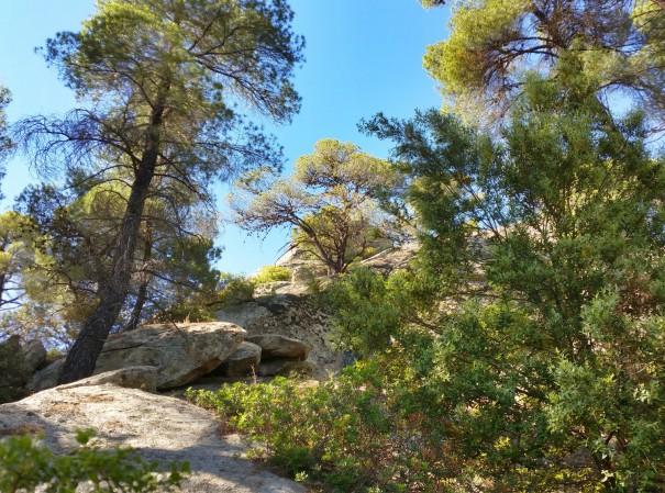 Immer hhöher geht es nun zum Petros Felsen ©www.entdecker-greise.de #corfelios