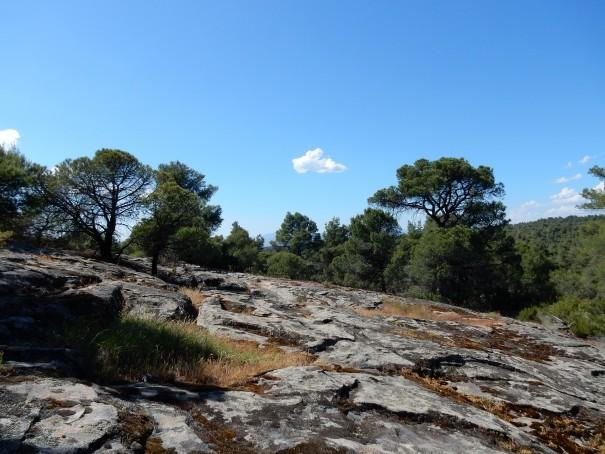 Je höher wir wandern, umso felsiger wird die Landschft hier auf dem Poseidon-Pfad ©www.entdecker-greise.de #corfelios