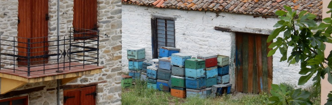 Nikiti, die Bienenstadt. Überall finden sich diese Beinenkästen aus Holz. ©www.entdecker-greise.de #corfelios